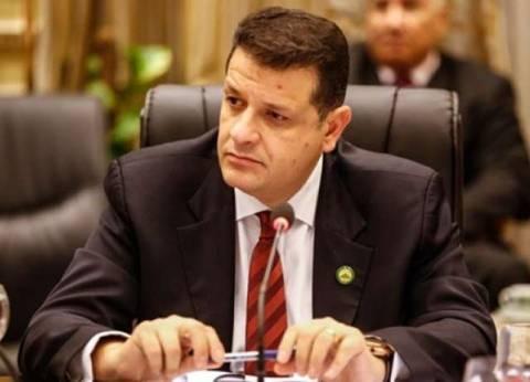 """رئيس """"خارجية النواب"""": مصر تحارب الإرهاب نيابة عن العالم"""