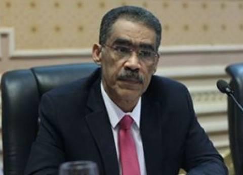 """ضياء رشوان: """"الرئيس اللي جاي هيشحت الناس للتصويت.. هي دي الديمقراطية"""""""
