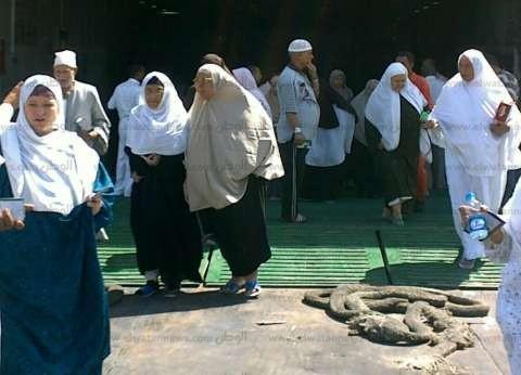 «الصحة»: ارتفاع حالات الوفاة بين الحجاج المصريين لـ92