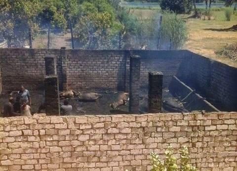 السيطرة على حريق نشب بحظيرة مواشي دون إصابات في الفيوم
