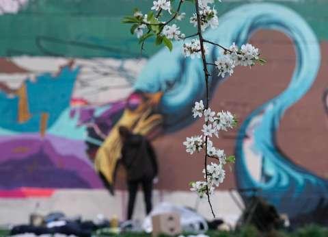 بالصور| جدران فيينا.. لوحة فنية يقصدها فناني الجرافيتي