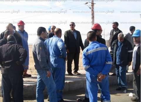 بالصور| مجلس مدينة أبو رديس يشن حملة نظافة بحي السلام البدوي