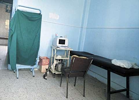 «قطط وكلاب ضالة» فى مستشفى بولاق الدكرور