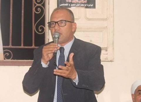 نائب برلماني يطالب بزيادة مساحة الأرز بمركزي التل الكبير والقصاصين بالإسماعيلية