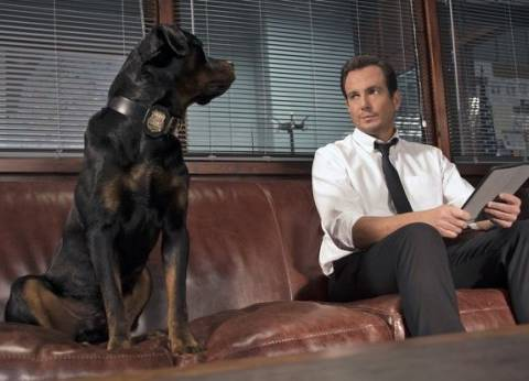 """اليوم.. دور العرض السينمائي تستقبل """"Show Dogs"""""""