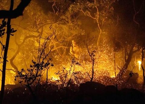 تدمير مناطق بجزيرة يونانية بسبب حرائق الغابات