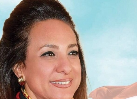 عضو «خارجية النواب»: نحتاج إلى خطة قومية وتحرك سريع لتصحيح المفاهيم المغلوطة عن مصر