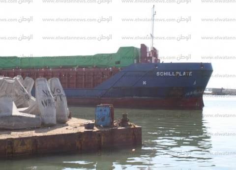 بالصور| ميناء البرلس يستقبل 12 طردا لمحطة الكهرباء الجديدة