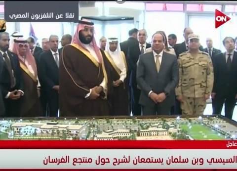 الرئاسة تكشف تفاصيل جولة السيسي وبن سلمان في الإسماعيلية