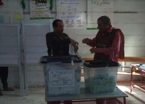 أخطاء باستمارات الانتخاب في لجنة بالشرقية