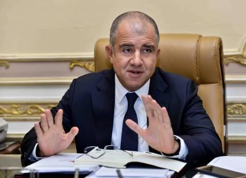 """رئيس """"دعم مصر"""": سعيد جدا بنسبة المشاركة في الانتخابات"""