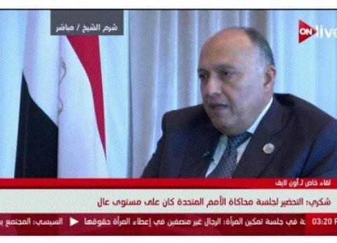 وزير الخارجية: قضية الإرهاب هي التحدي الرئيسي لدول المنطقة
