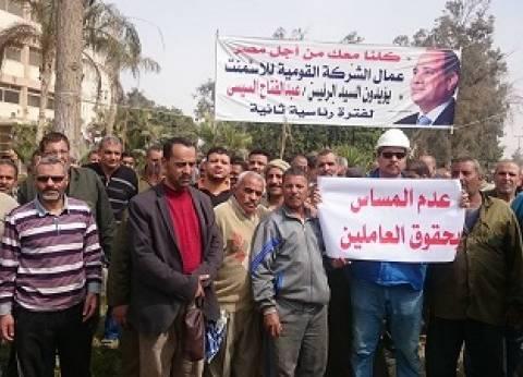 """عضو """"القومية للأسمنت"""": حرصنا على مصلحة الوطن سبب فض اعتصام العاملين"""