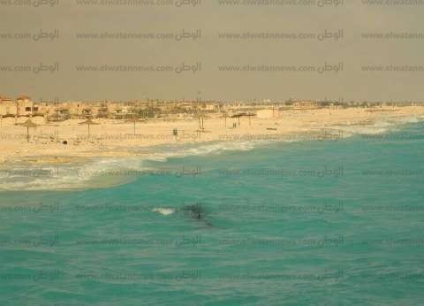 الإسكندرية تواصل تحذير زائري الساحل الشمالي من الطريق بسبب الإصلاحات