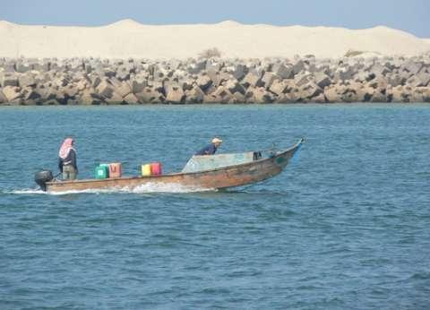 الإحصاء: 14.8% انخفاضا في الإنتاج السمكي من بحيرة البردويل في 2014
