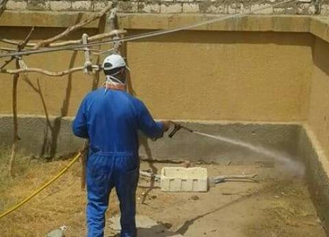 حملة لمكافحة «النمل الأبيض» بالمدارس والمنازل مجانا في حلايب وشلاتين