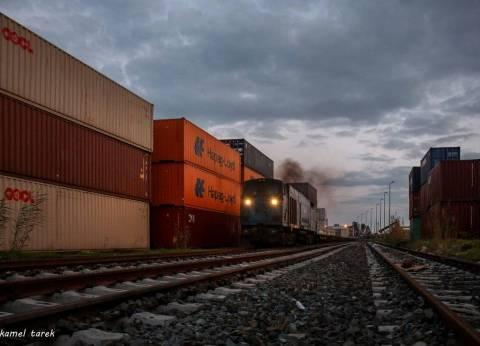 وصول 9 سفن حاويات وبضائع لميناء دمياط