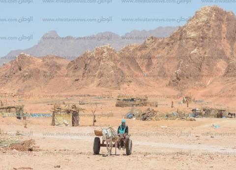 الانتهاء من المرحلة الأولى لتسقيف المنازل بقرى ووديان جنوب سيناء