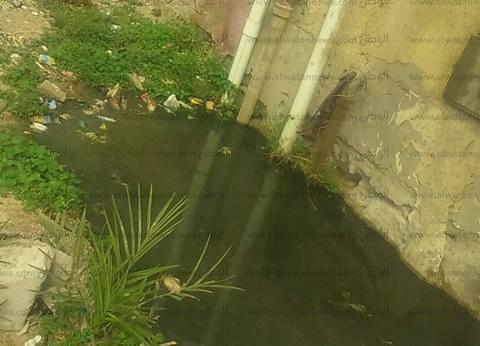 بالصور| الصرف الصحي يحاصر عمارات حي بدر الجديد بمدينة الطور