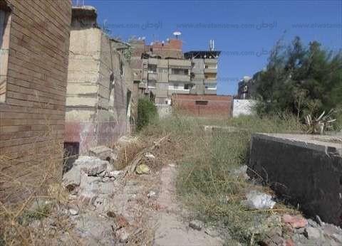 محافظ دمياط يأمر بتكثيف أعمال نظافة مقابر شهداء أكتوبر
