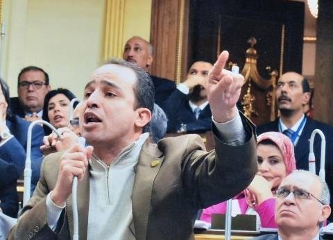 برلماني: مصر على الطريق الصحيح لإحياء شركات القطاع العام