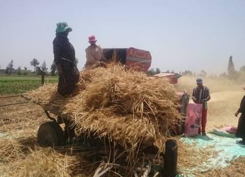 """تأثير التقدم الصناعي على المحاصيل.. أحدث إصدار بـ""""زراعة المنوفية"""""""