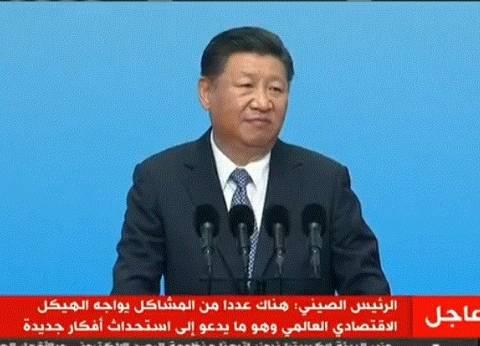 الرئيس الصيني: تنمية بريكس تعود بالنفع على 3 مليارات شخص
