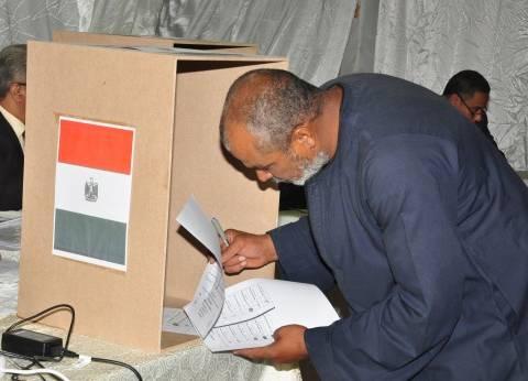 القنصل الأمريكي يشيد بانتظام العملية الانتخابية بالإسكندرية: مظهر حضاري