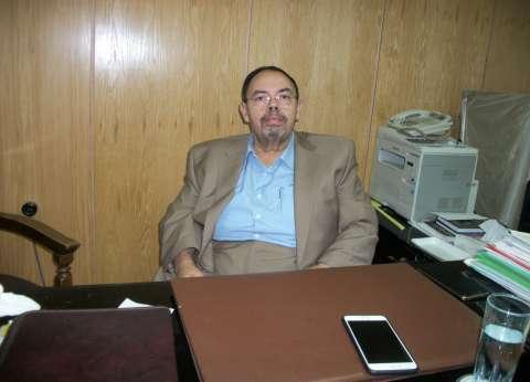 أستاذ أمراض الدواجن: غياب الرقابة ونقص معلومات صانعى القرار.. سبب كوارث المربين