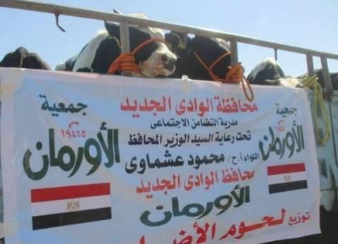 شوقي: وقف زواج طفلين بالقليوبية والتحقق من استغاثة طفل بدار الأورمان للأيتام