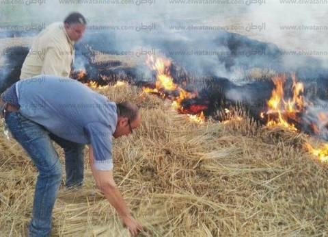 """""""البيئة"""": تحرير 125 محضر حرق مخلفات زراعية بالغربية خلال أسبوع"""