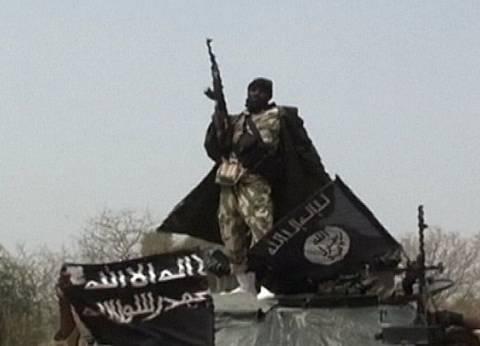 قمة بين تشاد ونيجيريا والكاميرون والنيجر لبحث مكافحة بوكو حرام