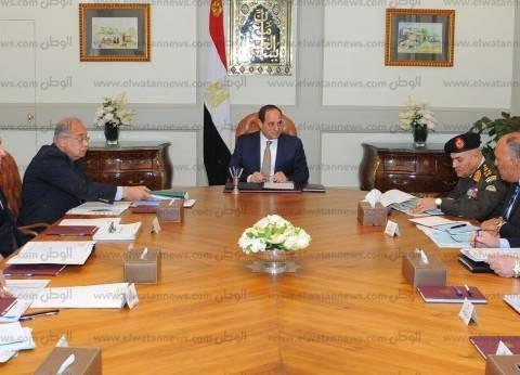 وزير الري يهنئ السيسي بفوزه بالرئاسة