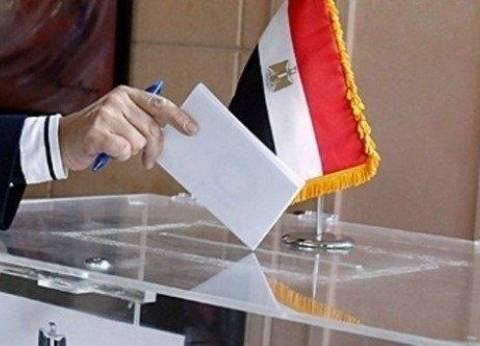 ماذا لو تقدم مرشح واحد فقط في الانتخابات الرئاسية المقبلة؟