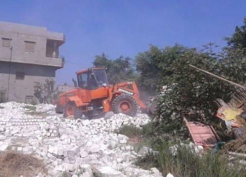 بالصور| إزالة التعديات على 3 أفدنة من الأراضي الزراعية في دمياط
