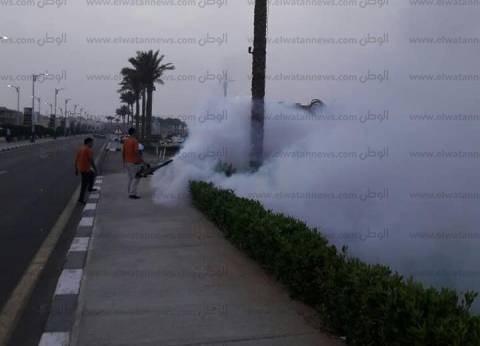 صور| نبق بشرم الشيخ تحت المبيدات الحشرية لليوم الثالث لمحاربة الباعوض