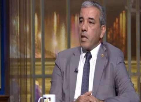 خبير في الشأن الإفريقي: مصر تدعم دول القارة السمراء في التنمية