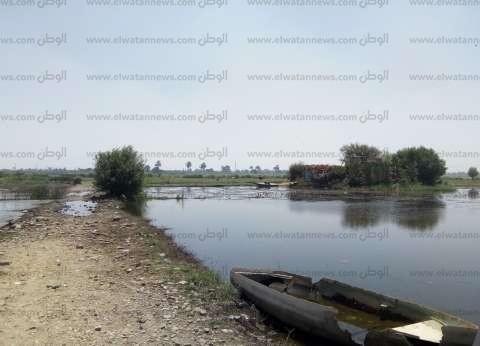 حملة من الري لإزالة التعديات على الجزر النيلية في بني سويف