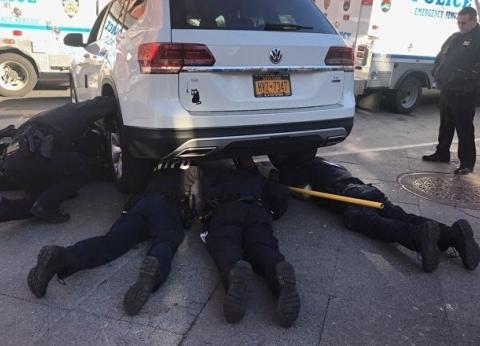 بالفيديو| 7 رجال من الشرطة الأمريكية يشاركون في عملية إنقاذ قطة
