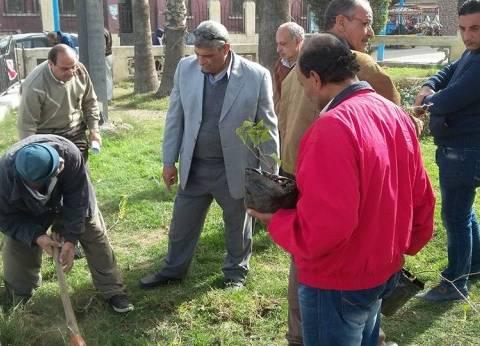 حي الجمرك بالإسكندرية يتابع أعمال تجميل الميادين العامة
