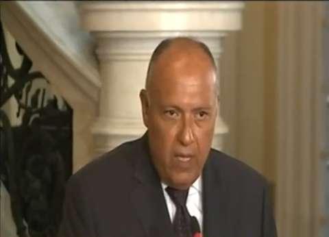 سامح شكري لنظيره الجزائري: متمسكون بمطالبنا المقدمة لقطر