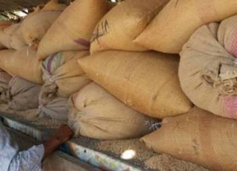توريد 138 ألف و907 أطنان من محصول القمح لـ15 موقع استلام بالفيوم