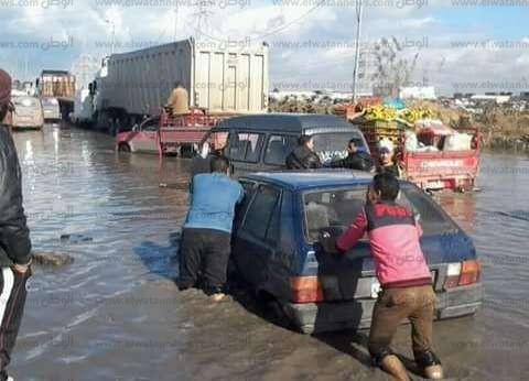 """بالصور  """"العامرية"""" تغرق في الأمطار.. و""""صرف الإسكندرية"""": أرسلنا سيارات لشفط المياه"""