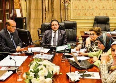 """الاثنين.. """"لجنة حقوق الإنسان"""" تفتح ملف تعويض شهداء مسجد الروضة"""