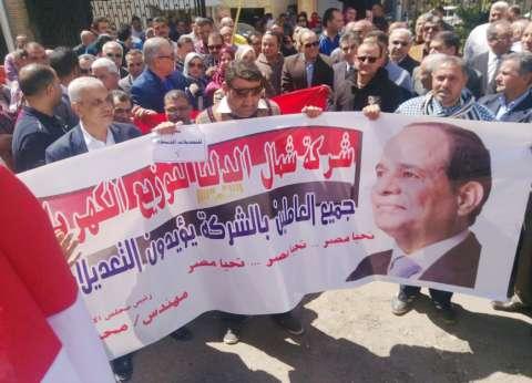 مسيره للعاملين بشمال الدلتا لتوزيع الكهرباء دعما للاستفتاء على الدستور