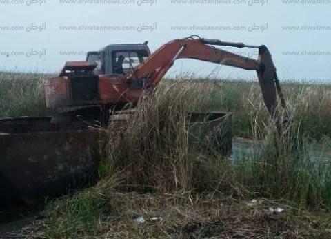بالصور| إزالة التعديات على 30 فدانا ببحيرة البرلس