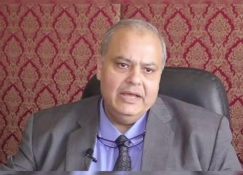 """""""الشؤون القنصلية"""": المشهد الانتخابي للمصريين في الخارج أكثر من رائع"""