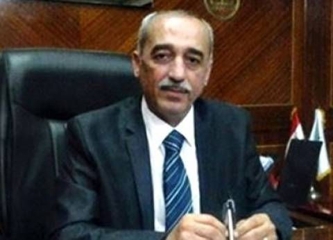 محافظ كفر الشيخ: لم نرصد تجاوزات انتخابية والمحافظة آمنة