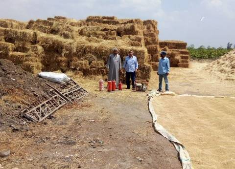 معاينة 13 موقعا لتجميع قش الأرز بالشرقية وشركتين في الإسماعيلية