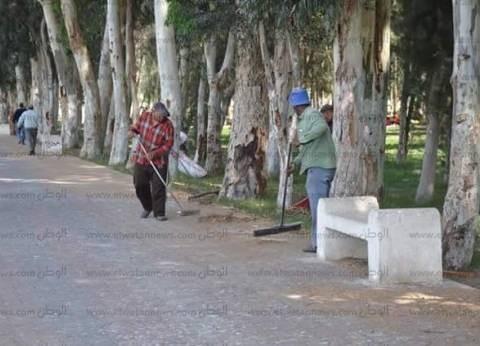 """مكافحة حاملات الأمراض بـ""""صحة الإسكندرية"""" ترش الحدائق والشوارع والأسواق"""